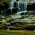 North Carolina Fall Colors by Donald Trimble