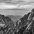 5818- Yellow Mountains Black And White by David Lange