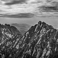 58462 Yellow Mountains Black And White by David Lange
