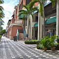 5th Avenue South Naples Florida by Timothy Lowry