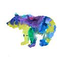 Bear Cub by Steph J Marten
