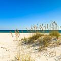 Beautiful Beach by Raul Rodriguez