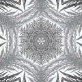 Fern Frost Mandala by J McCombie