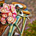 Flower Bike Collection by Marvin Blaine