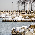 Frozen Winter Scenes On Great Lakes  by Alex Grichenko