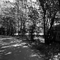Natchez Trail by Avril Christophe