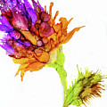 Purple Flower by Lilia D