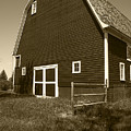 Barn And Wild Flowers Sepia by Donald  Erickson