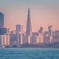 San Francisco California City Skyline At Spring Sunset by Alex Grichenko