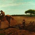 The Brush Harrow by Winslow Homer