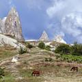Cappadocia - Turkey by Joana Kruse