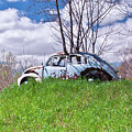 67 Volkswagen Beetle by Suzanne Stout
