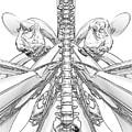 Bw Sketches by Joseph Ventura