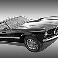 69 Mach1 In Black And White by Gill Billington