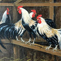 #69 - Roosters by Jeanne Mellin Herrick