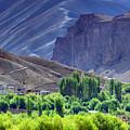 aerial view of Leh ladakh landscape Jammu and Kashmir India by Rudra Narayan  Mitra