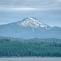 Beautiful Landscapes Around Ketchikan And Tongass Forest In Alas by Alex Grichenko