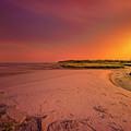 Big Talbot Island by Peter Lakomy