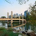 Calgary by Songquan Deng