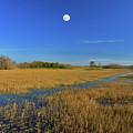 7- Everglades Moon by Joseph Keane