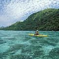 Fiji, Kadavu Island by Ron Dahlquist - Printscapes