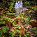 Goit Stock Waterfall by Mariusz Talarek