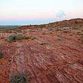 Horseshoe Bend Colorado River Arizona Usa by Gal Eitan