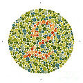 Ishihara Color Blindness Test by Wellcome Images