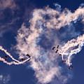Raf Falcons by Angel Ciesniarska