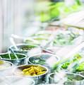 Salad Bar Buffet Fresh Mixed Vegetables Display by Jacek Malipan