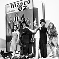 Wizard Of Oz, 1939 by Granger
