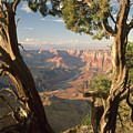 713261 V Desert View Grand Canyon by Ed Cooper Photography