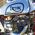 750 Triton by Tim Gainey