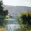 Landscape  by MotionAge Designs