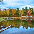 Autumn Season In Killarney by Aqnus Febriyant