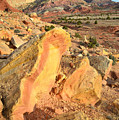Capitol Reef Scenic Drive by Ray Mathis