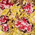 Divine Flower by Baljit Chadha