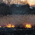 Fires Sunset Landscape by Oleksandr Masnyi