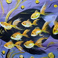 8 Gold Fish by Gina De Gorna