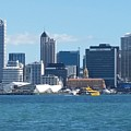 New Zealand - The Sea Heart Of Auckland by Jeffrey Shaw