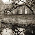 Old Sheldon Church Ruins by Dustin K Ryan
