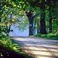 Road by Bert Mailer