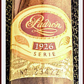 Serie 1926 Padron Cigar  by Shirley Anderson