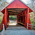 8351- Campbell's Covered Bridge by David Lange