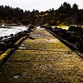 Bastendorff Beach by Angus Hooper Iii