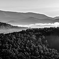 Early Morning On Blue Ridge Parkway by Alex Grichenko