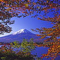 Mount Fuji In Autumn by Michele Burgess