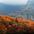 Mountain by Bert Mailer