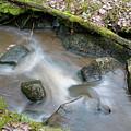 Rapids  by Esko Lindell