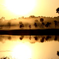 Sunrise / Sunset / Indian River by W Gilroy